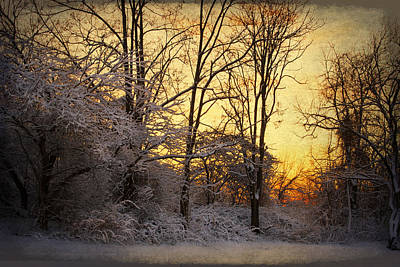 Once Upon A Winter Morning.. Art Print