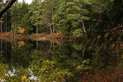 Maine Nature Photograph - Once Upon An Autumn Morn by Susan Capuano