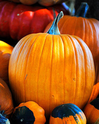 Photograph - One Beautiful Pumpkin by Jai Johnson