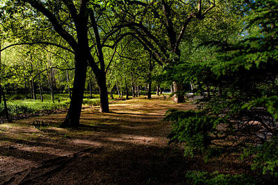 Photograph - One Day In The City Park by Edgar Laureano