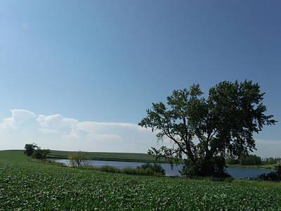 One Tree Farm Lake Original by Brian  Maloney