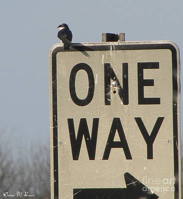 Photograph - One Way by Donna Brown