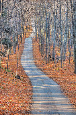 Dappled Light Photograph - One Way Home by Bruce Kenny
