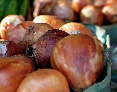 Onions At A Roadside Market Art Print by Toni Hopper