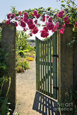 Gate Photograph - Open Garden Gate With Roses by Elena Elisseeva