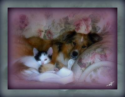 Art Print featuring the photograph Opposites Attract by Michelle Frizzell-Thompson