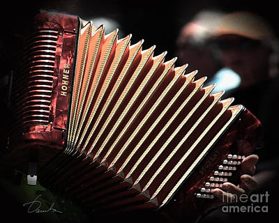 Photograph - Orange Accordion by Danuta Bennett
