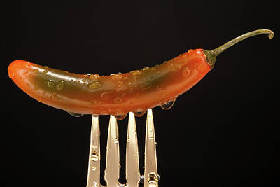 Photograph - Orange And Green Jalapeno by Johnny Sandaire