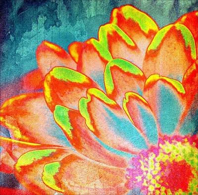 Orange And Yellow Petals Of Color Art Print by Cathie Tyler