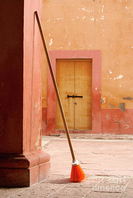 Photograph - Orange Broom Mineral De Pozos Mexico by John  Mitchell