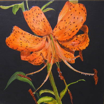 Orange Day Lilies Art Print
