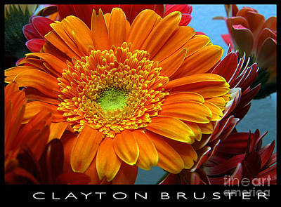 Photograph - Orange Floral by Clayton Bruster