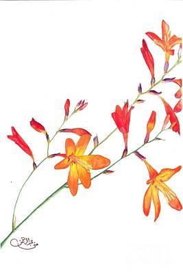 Orange Flowers Art Print by Muna Abdurrahman