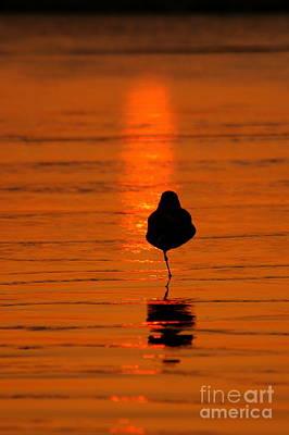 Photograph - Orange Glow Of Silver Strand  by Johanne Peale