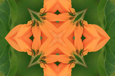 Photograph - Orange-green Kaleidoscope by Bill Barber