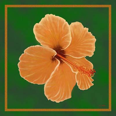 Orange Hibiscus Art Print by Tim Stringer