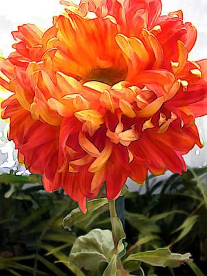 Mums Painting - Orange Pom Pom Chrysanthemum by Elaine Plesser