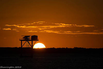 Photograph - Orange Sunset by Shannon Harrington