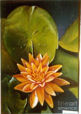 Painting - Orange Waterlily by Geri Jones
