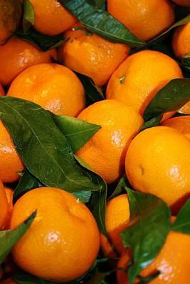 Photograph - Oranges by Bruce Bley