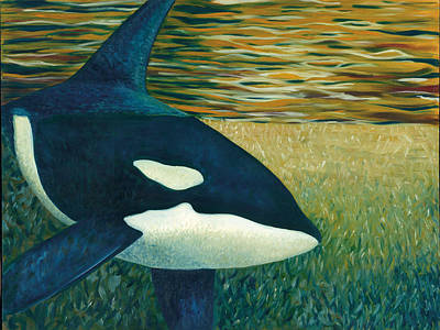 Orca Painting - Orca by Tammy Olson