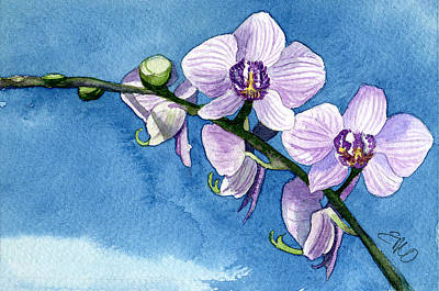 Painting - Orchid by Eunice Olson