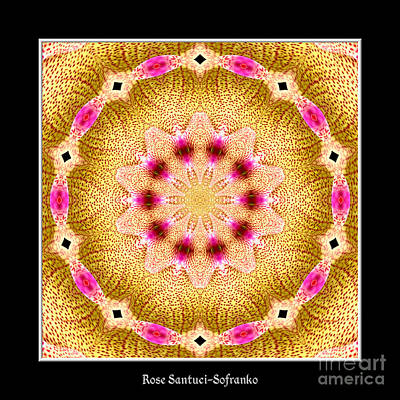 Floral Photograph - Orchid Kaleidoscope 11 by Rose Santuci-Sofranko