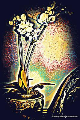 Photograph - Orchid Noir by Diane montana Jansson