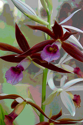Orchid Sonata Art Print by Suzanne Gaff