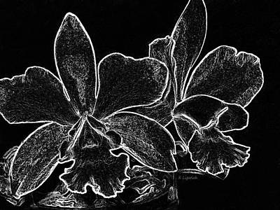 Digital Art - Orchids - Black And White Abstract by Kerri Ligatich