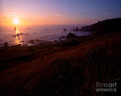 Photograph - Oregon - Cape Ferrelo 3 by Terry Elniski