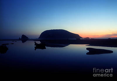 Photograph - Oregon - Harris Beach State Park 3 by Terry Elniski
