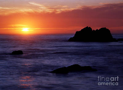 Photograph - Oregon - Harris Beach State Park by Terry Elniski