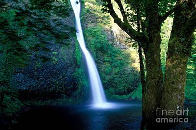 Photograph - Oregon - Horsetail Falls by Terry Elniski
