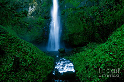 Photograph - Oregon - Multnomah Falls by Terry Elniski