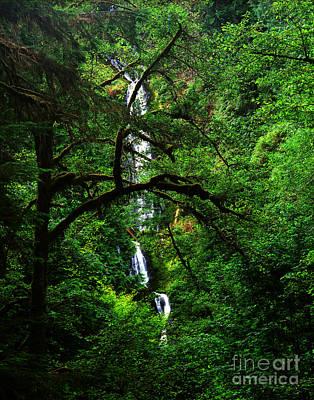 Photograph - Oregon - Munson Creek Falls by Terry Elniski