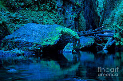 Photograph - Oregon - Oneonta Gorge by Terry Elniski