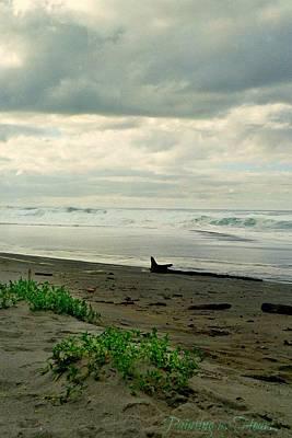 Photograph - Oregon Coast 17 by Deahn      Benware