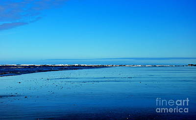 Oregon Photograph - Oregon Coast Blues by Tanya  Searcy