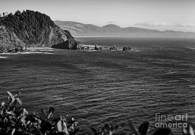 Photograph - Oregon Coast In Black And White by Sherry  Curry