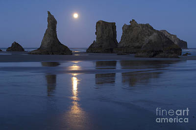Photograph - Oregon Coast by John Shaw and Photo Researchers
