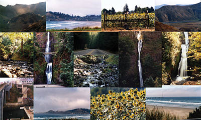Oregon Collage From Sept 11 Pics Art Print by Maureen E Ritter