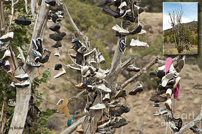 Photograph - Oregon Shoe Tree by Larry Keahey