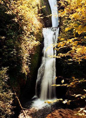 Art Print featuring the photograph Oregon Waterfall Yellows by Maureen E Ritter
