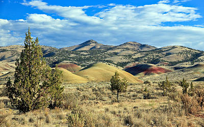Photograph - Oregons Painted Hills by Athena Mckinzie
