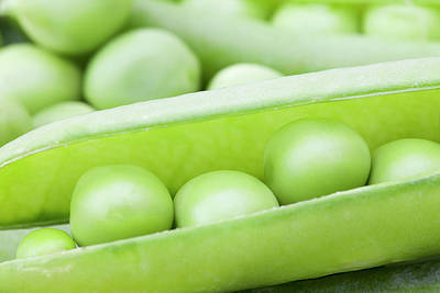 Healthy Eating Photograph - Organic Peas by Andrew Dernie