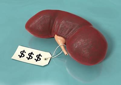 Organs For Sale, Conceptual Artwork Art Print by David Mack