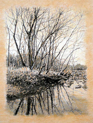 Drawing - Original Bare Branch Reflections by Michael Story