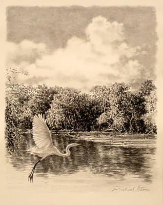 Drawing - Original Congaree River Flight by Michael Story
