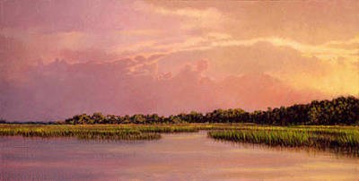 Painting - Original Illuminating Edisto by Michael Story